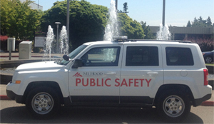 Public Safety Car